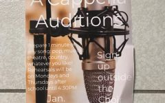 Pop Acapella Auditions