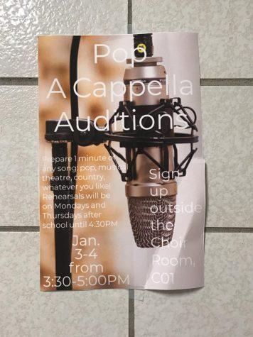 Pop Acapella Auditions