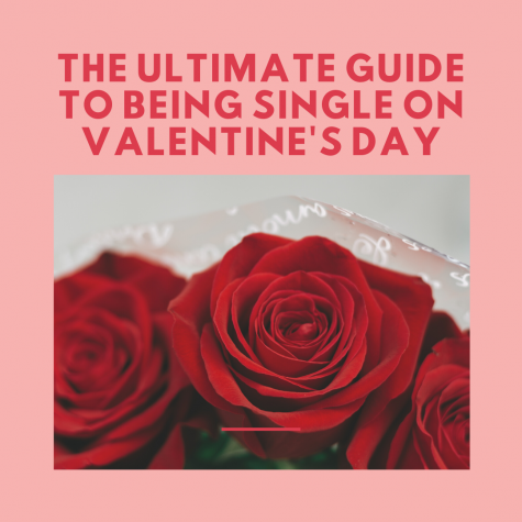 Ultimate Guide to Being Single On Valentine's Day